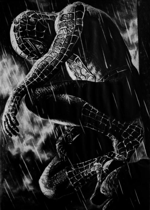 Tobey Maguire, Spider-Man by aljackson